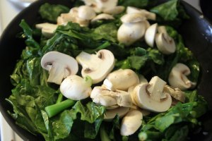 2015-gailan-mushroom 014