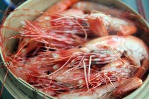 2015-bc-spot-prawns 009